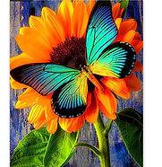 le papillon 50 x 40 cm.jpg