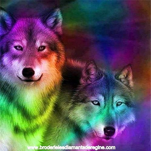 Les loups colorés