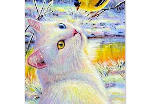 chat blanc et oiseau