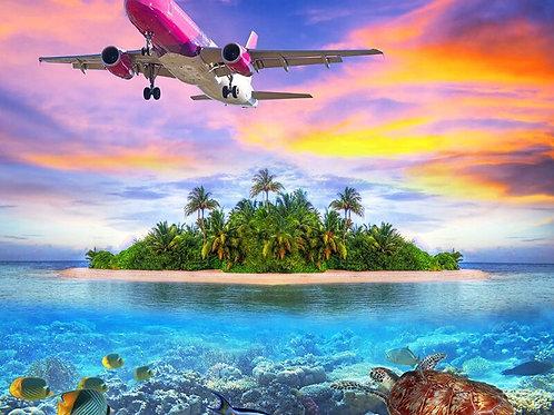 le vol au dessus de l'île