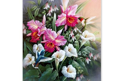les fleurs et le petit colibri