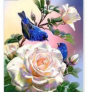 oiseau et rose.jpg