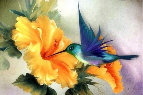 le colibri et la fleur