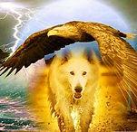 loup et aigle 50 x 50 cm.jpg