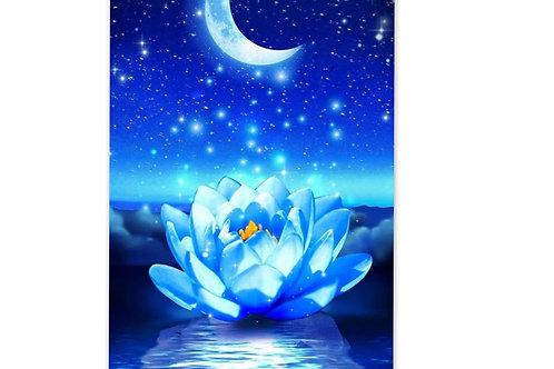 Fleur de lotus sous croissant de lune