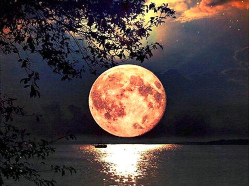 le magnifique clair de lune