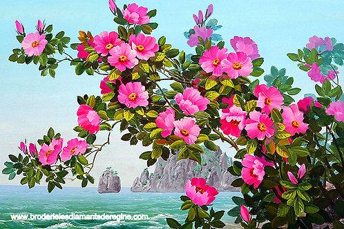 le buisson fleuri sur la mer