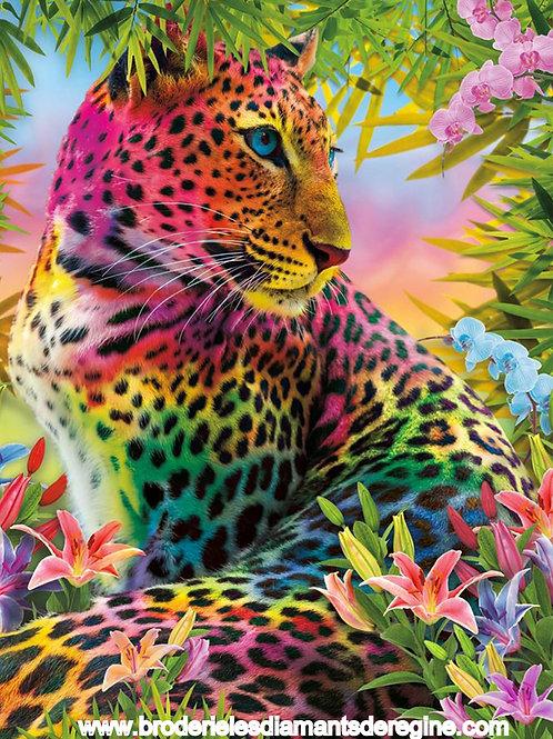 la panthère colorée