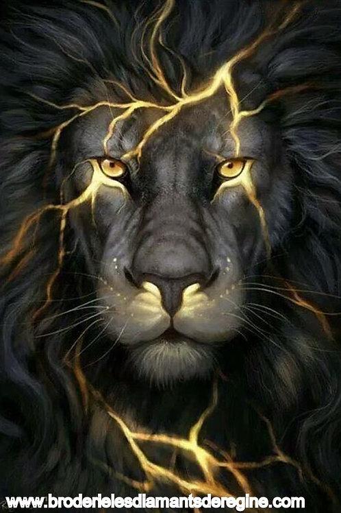 le lion noir éclair