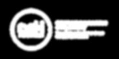 DSM-Logo(wo).png