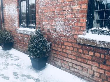 Hire Snow Scene fake snow Winter scenes