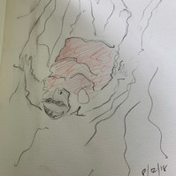 cruising sketch_19.JPG