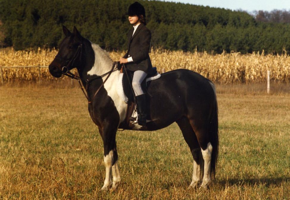 Prince - Kristin's childhood horse