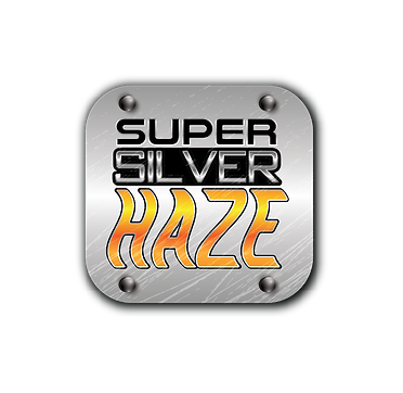 super-silver_1@4x.png