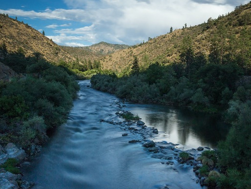 Goda nyheter: En ljusare framtid för laxen tack vare återfödelsen av en historisk flod