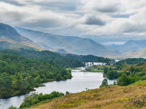 Goda nyheter: Skotska höglandets vildmark ska återställas
