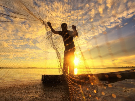 Goda nyheter: Hållbart fiske på frammarsch