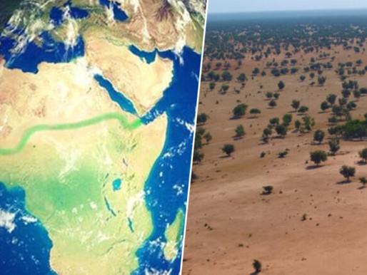 Goda nyheter: Den stora trädplanteringen genom Sahelbältet i Afrika har fått finansiellt stöd