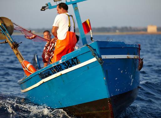 Inspiration: En fiskeby i Italien står som modell för hur haven kan räddas