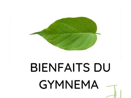 Gymnema (gymnema sylvestris)