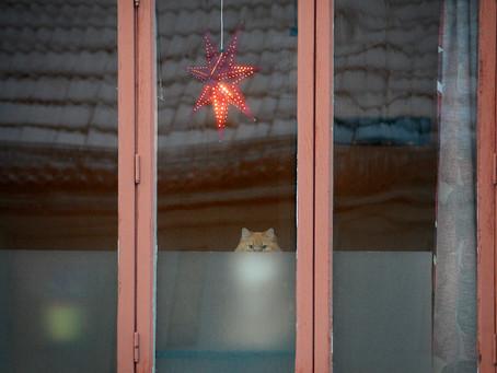 Snuvade på julen?