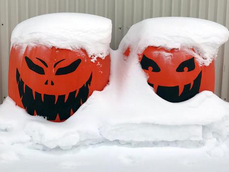 Älska vinter?