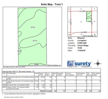 Anderson Soil Map.jpg