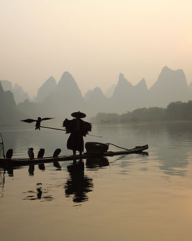 Cormorant fishing on the Li River.jpg