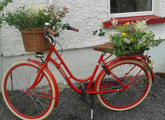 11-Red Bicycle.jpg
