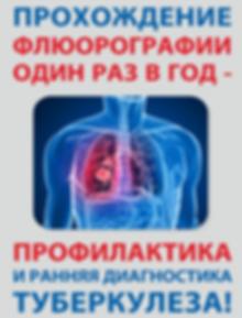 tuberkulez4.png