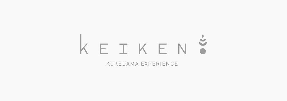 logo_keiken.png