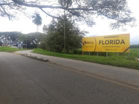 Florida 02.jpg
