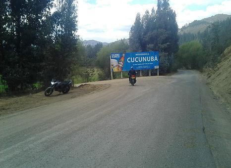 CUCU 01.jpeg