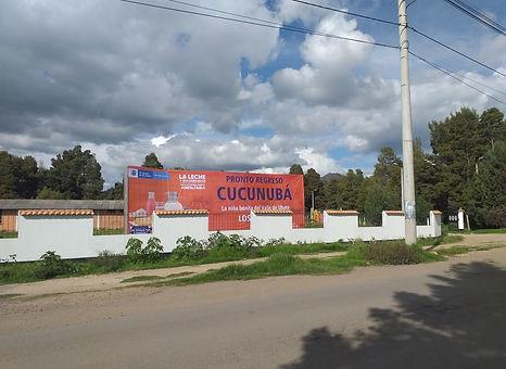 CUCU 03.jpg