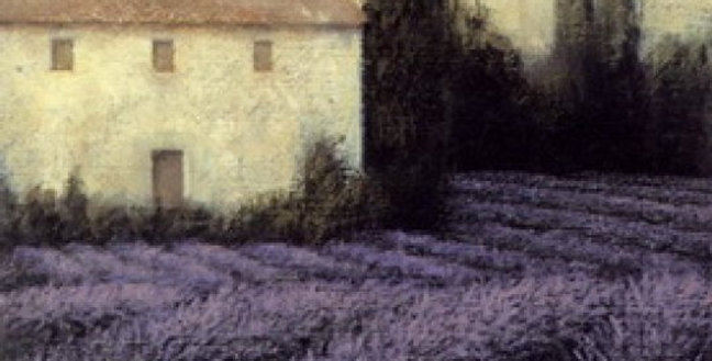 Lavender farm Print