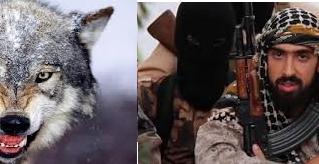 """De aquel Lobo Feroz a este """"lobo solitario""""que siembra el pánico en Occidente"""