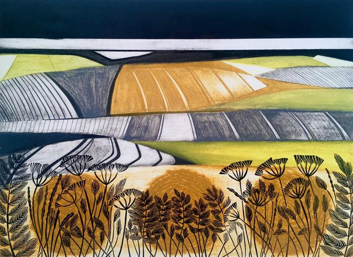 Harvest Plains