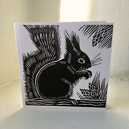 Squirrel Card Set Of Five