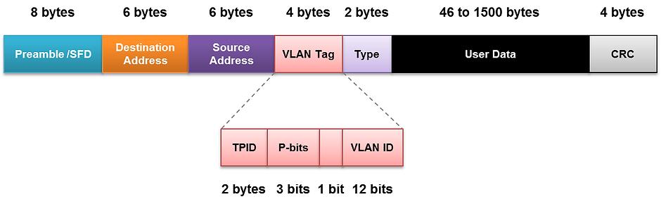 Formato de la trama Ethernet, en diferentes colores para mejor comprensión