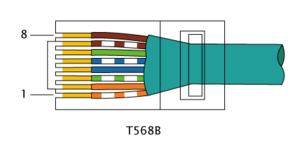 RJ-45_TIA-568B_Left.png