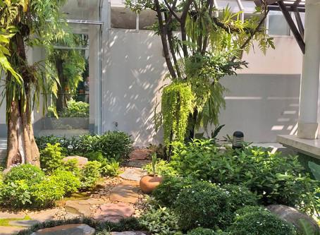 Principles of Home Gardening