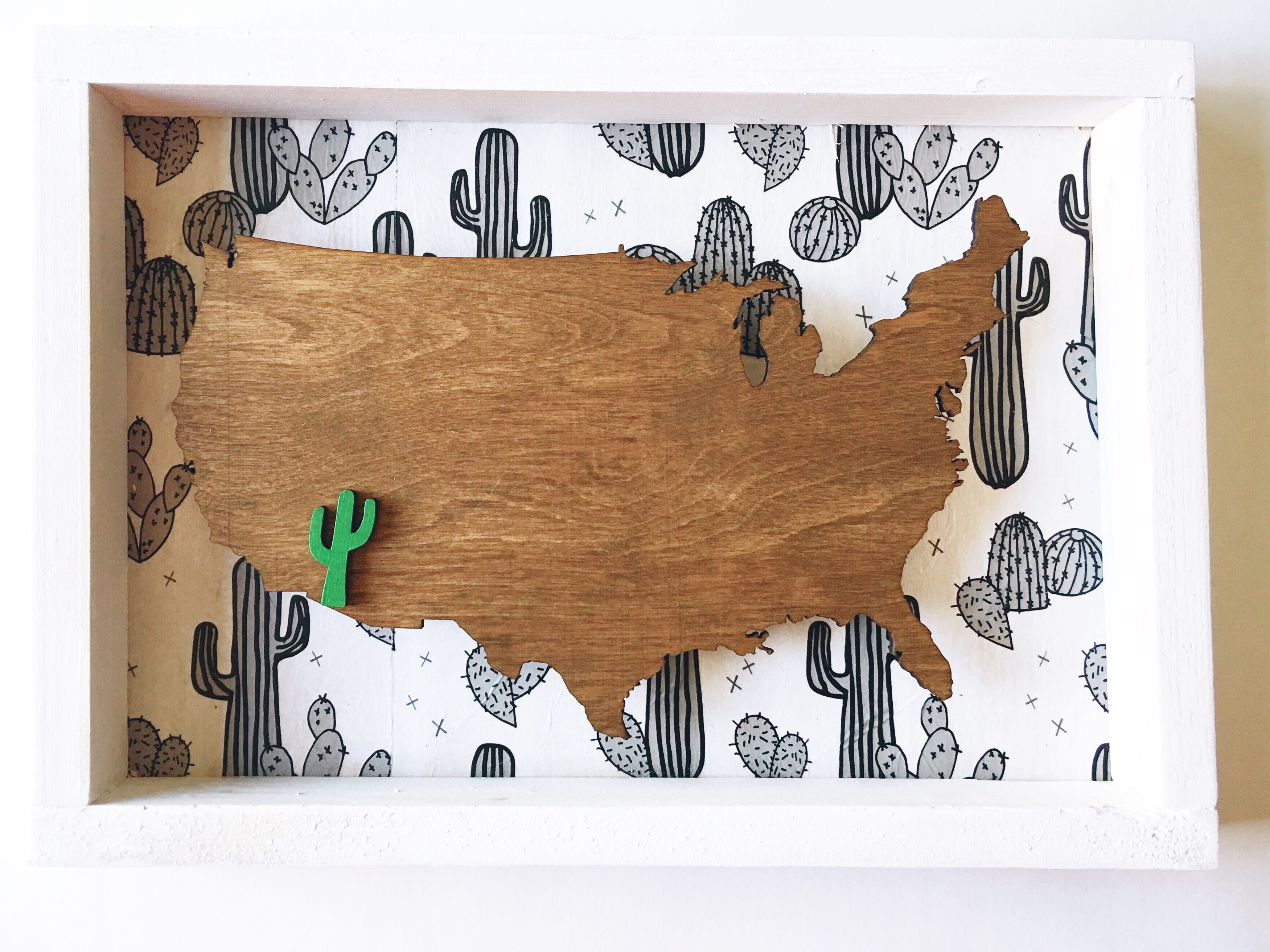 USA Cactus