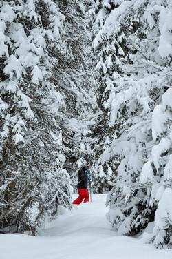Winter activities at Wild Fox Cabins
