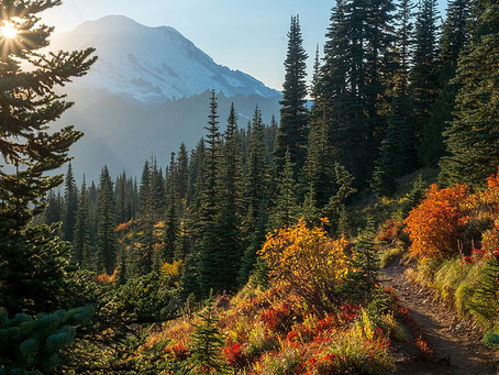 Washington State: Best Places to Visit by County (Adams - Franklin)