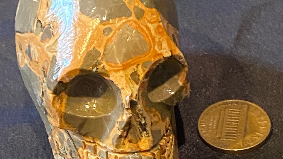 Large Leopardite Skull