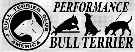 Decal for Performance draft.png