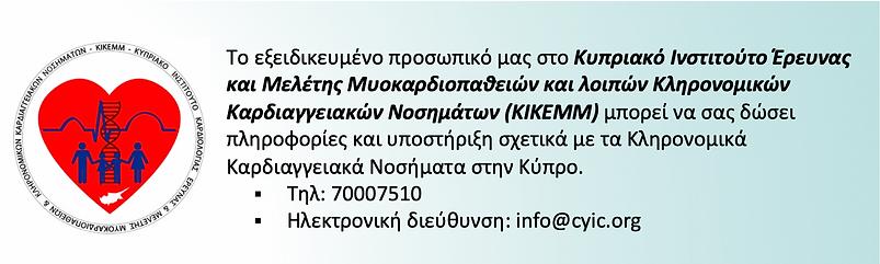 Κυπριακό Ινστιτούτο Έρευνας και Μελέτης