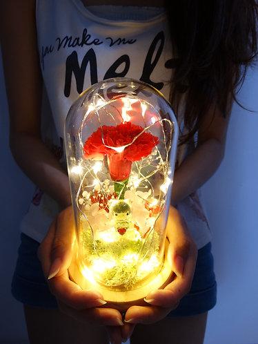 「愛。母親」- 康乃馨小夜燈