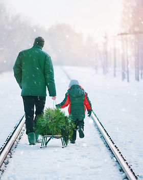 Collecting Christmas Tree