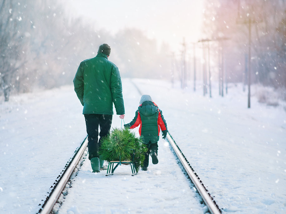 Collecting Christmas Tree